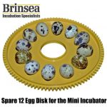 Brinsea Mini Eco Hatching Egg disk