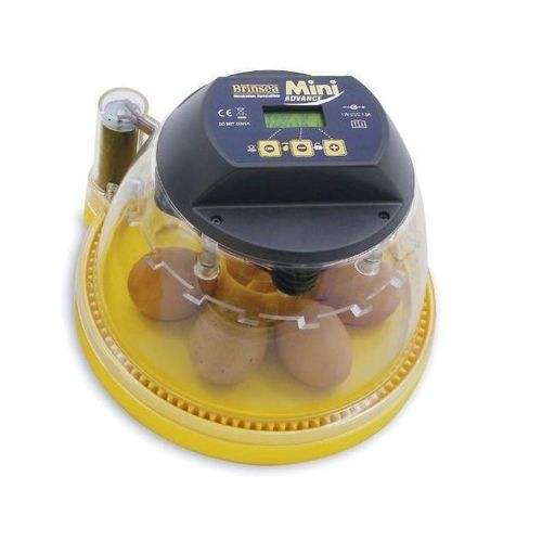 Brinsea Mini Eco Hatching Egg Incubator Review
