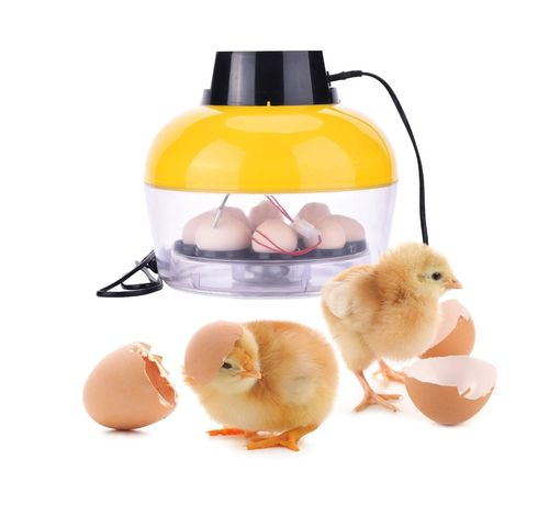 Yosoo 10 Chicken Eggs Mini LED Digital Incubator Poultry Hatcher Fan Temperature Review